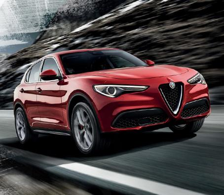 stelvio-opening-edition-form-canvas.jpg